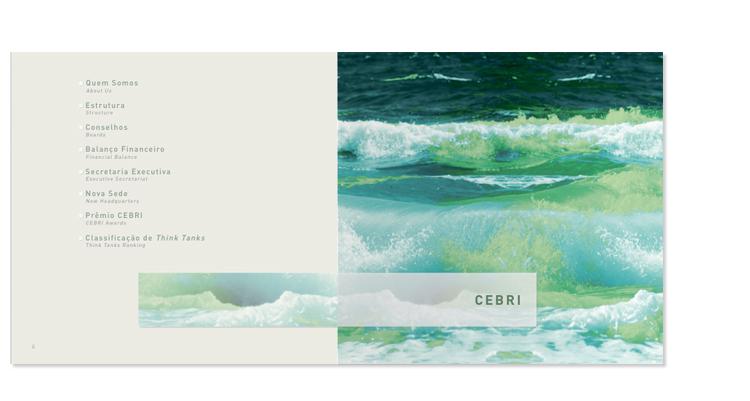 Relatório de Atividades CEBRI 2010 - 2011