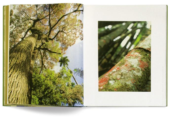 Livro Jardim Botânico