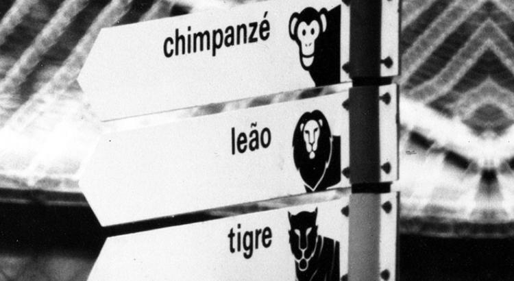 zooRio